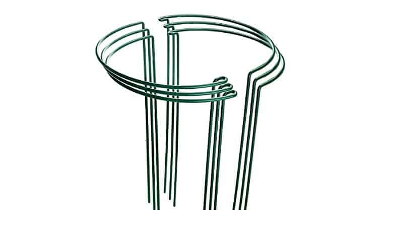 LEOBRO 4 Pack Plant Support Stake