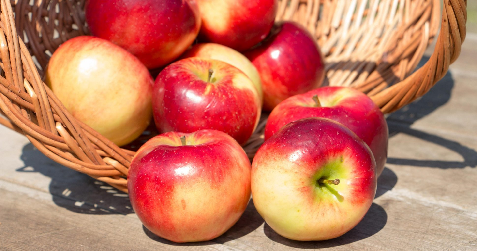 How To Store Apples For Long Shelf Life?