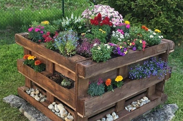 Best plants to use