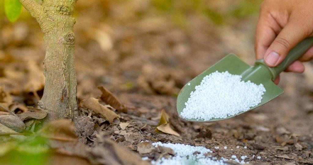 Fertilizer Numbers Explained