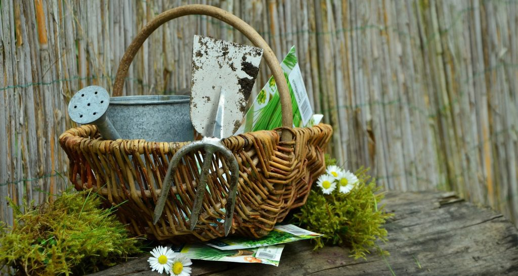 44 Gifts For Gardeners