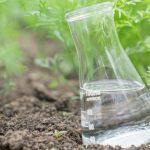 Best Liquid Fertilizer