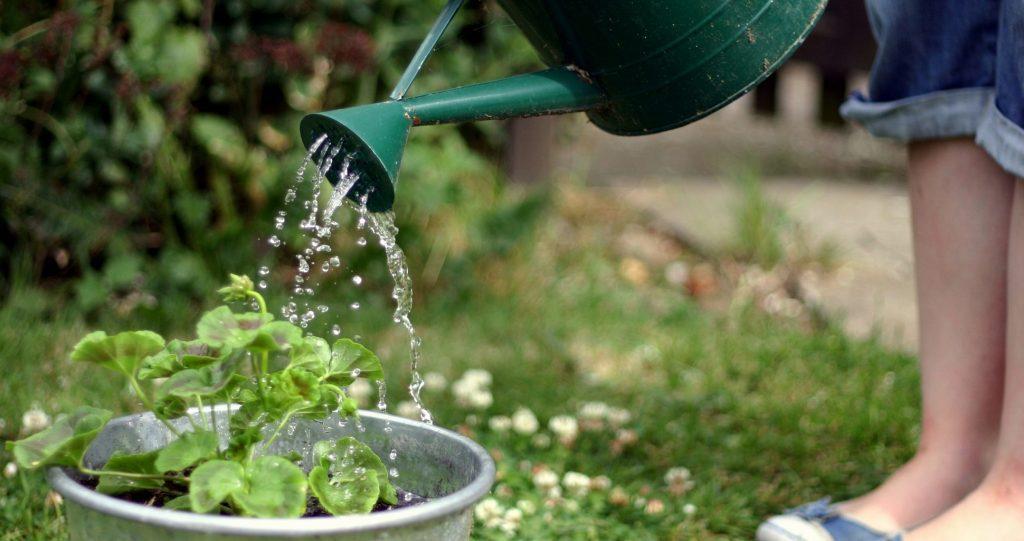 7 Irrigation System Types